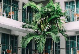 רשת המלונות Marriott מפרסמת כי הודלפו פרטים אישיים של 383 מיליון לקוחות