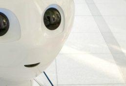 בובות מין רובוטיות עלולות להרוג אנשים – כך מזהיר מומחה אבטחת סייבר