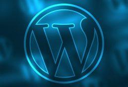 אלפי אתרים המשתמשים ב-WordPress נפרצו – כך תשמרו על האתר והמידע שלכם